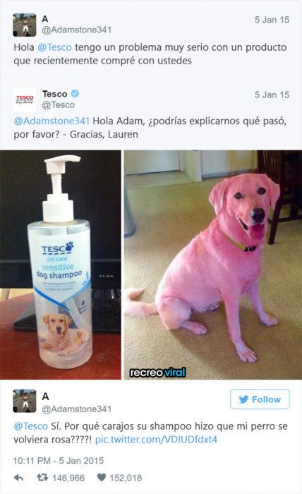 Quejas de clientes - Mi perro está rosa