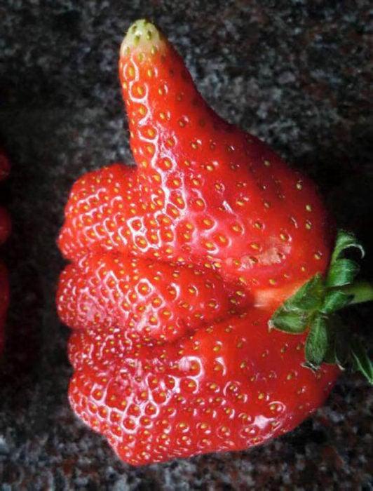 fresa en forma de mano