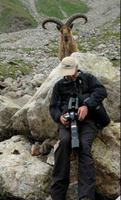 fotógrafo en las montañas dando la espalda a un ciervo