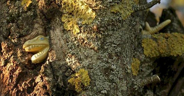 dinosaurio atrapado en un árbol