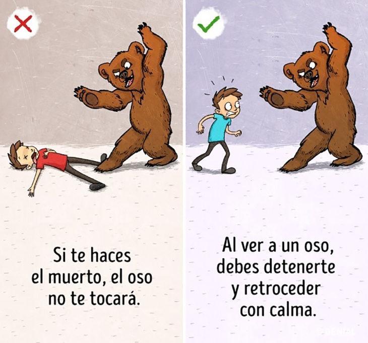 ilustración humano y oso