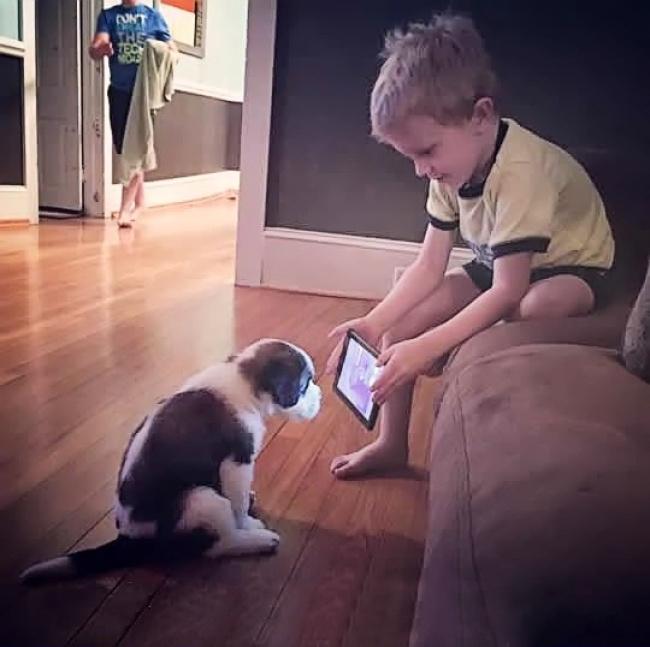 niño enseñando un celular a un cachorro