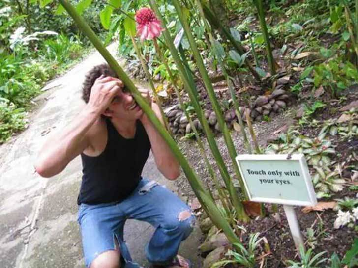 chico tocando una planta con la cabeza