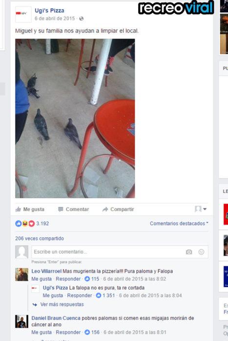 palomas bajo una mesa