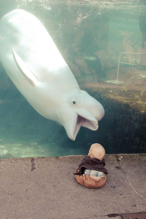 criatura de mar y bebé humano