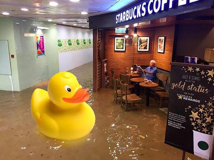 señor en starbucks inundado editado con un pato de plástico