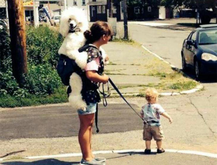 señora cargando un perro y sostiene a su hijo con correa