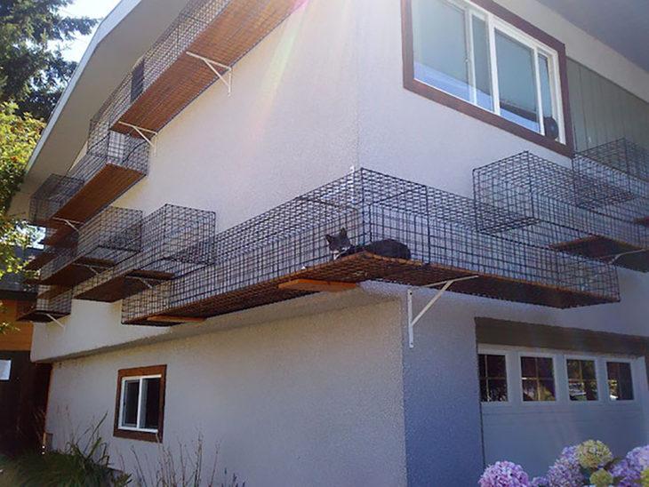 casa con corredor externo para gato