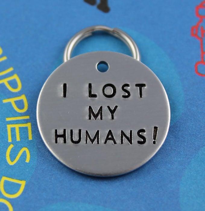 collar de perro, perdí a mis humanos