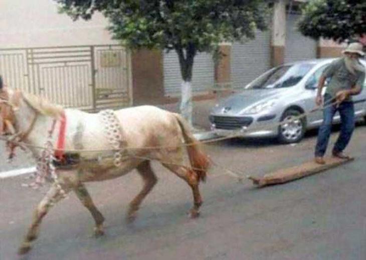 señor en tabla de madera es jalado por caballo