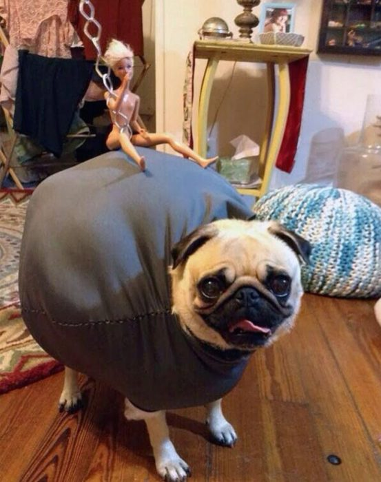 disfraz de bola de miley cyrus