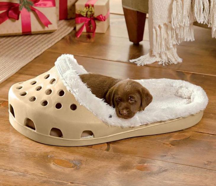 cama de perro en forma de zapato