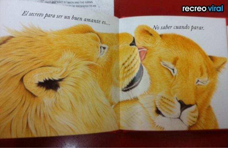 dibujo de pareja de leones en libro infantil