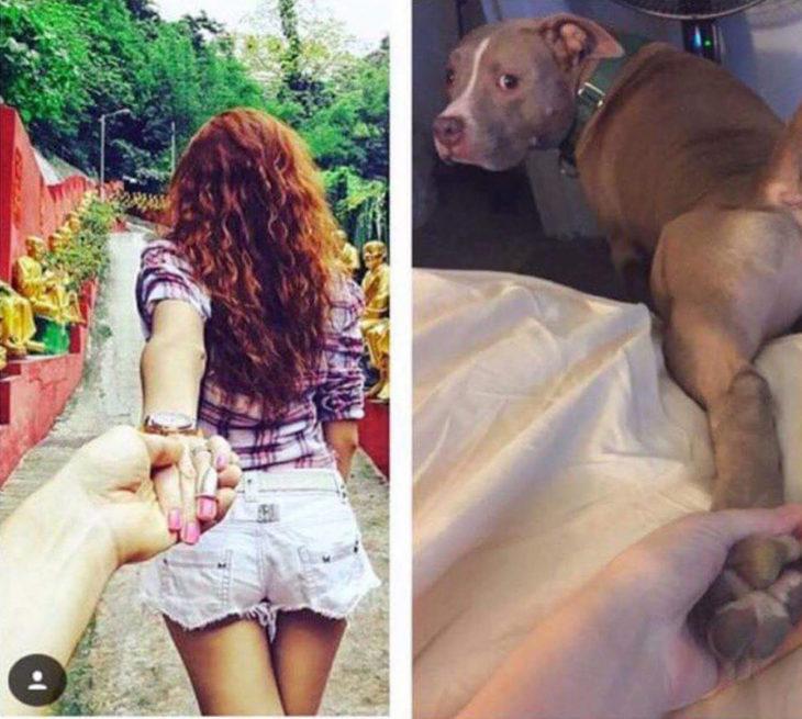 chico tomando mano de mujer vs. chico tomando pata de perro