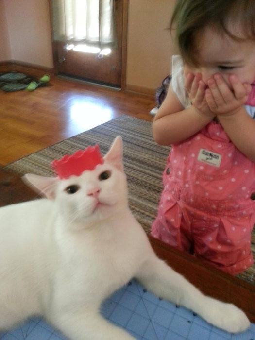niña emocionada al ver un gato con una tiara