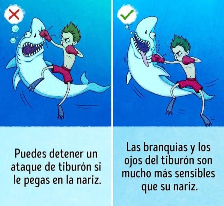 ilustración muchacho golpea a tiburón