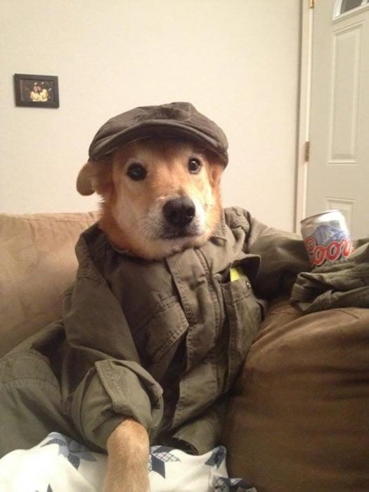 perro vestido con ropa de humano