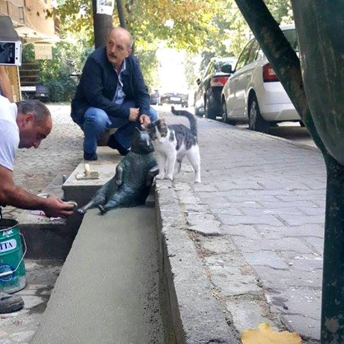 personas y gato en una acera