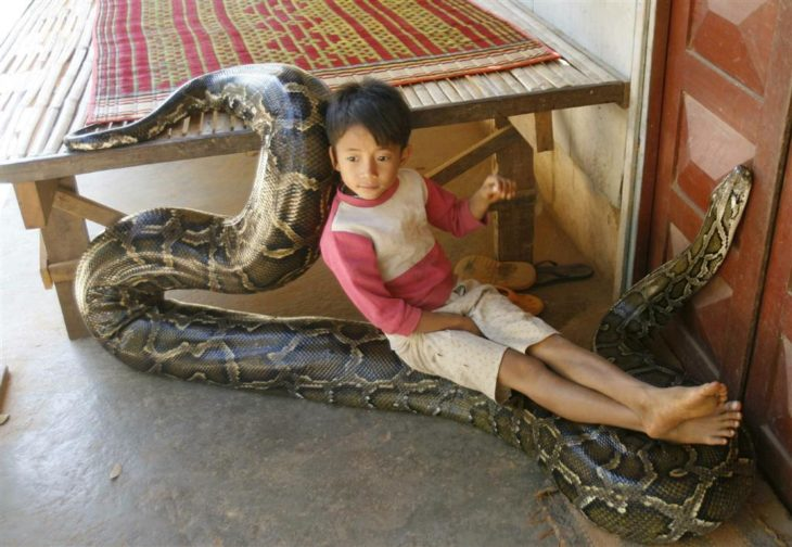 niño sobre una serpiente