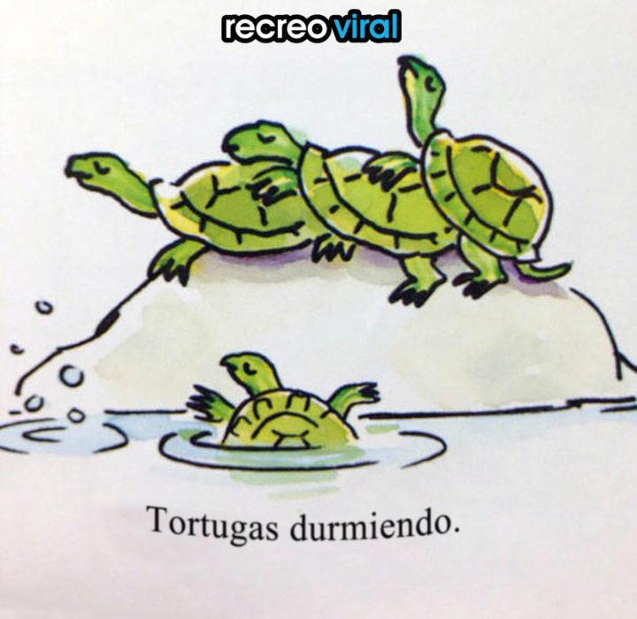 dibujo de tres tortugas durmiendo juntas