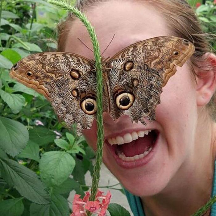 mariposa posada en rostro de mujer