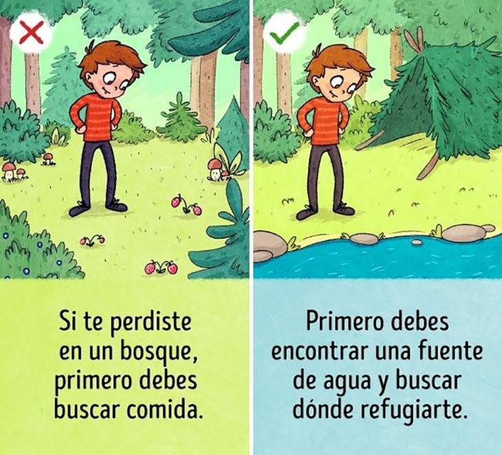ilustración muchacho en el bosque