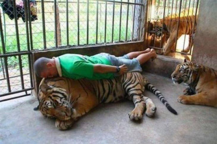 hombre arriba de un tigre