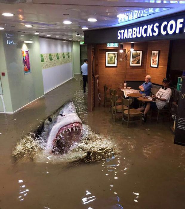 señor en starbucks inundado editado con un tiburón