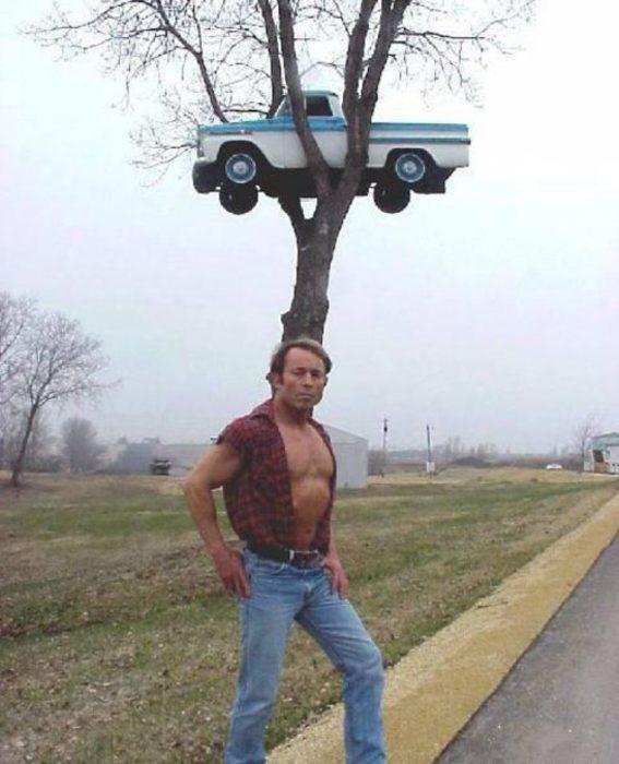 camioneta en lo alto de un árbol