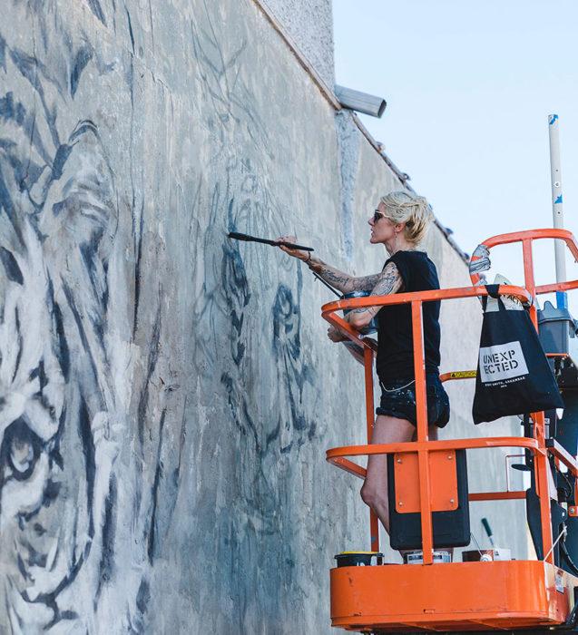 pintando tigres