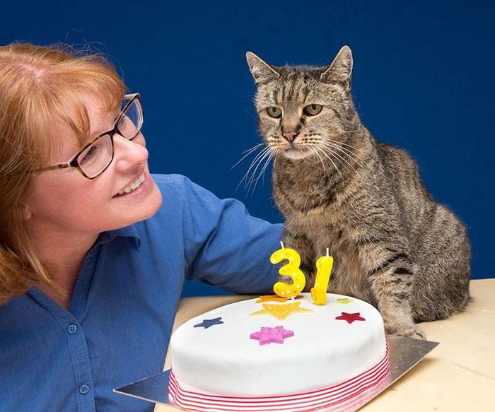 Mujer acariciando a un gato al frente de un pastel por su 31 cumpleaños