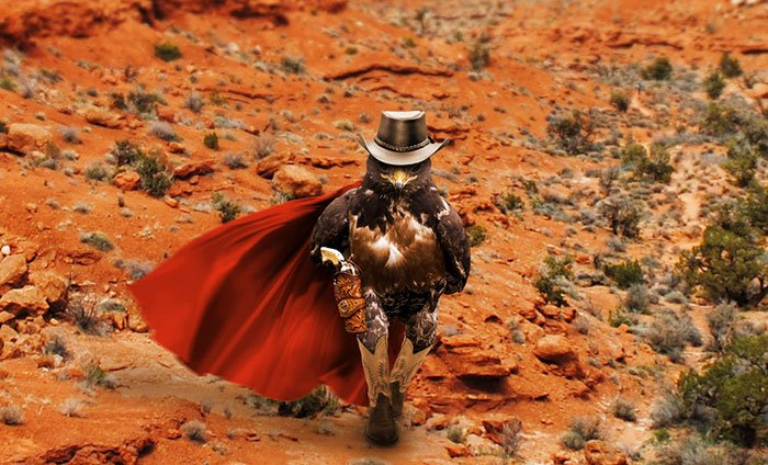 Halcón Batalla PS - con capa y sombrero y botas