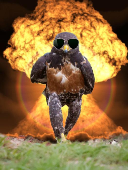 Halcón Batalla PS - explosión atrás