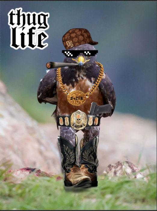 Halcón Batalla PS - thug life