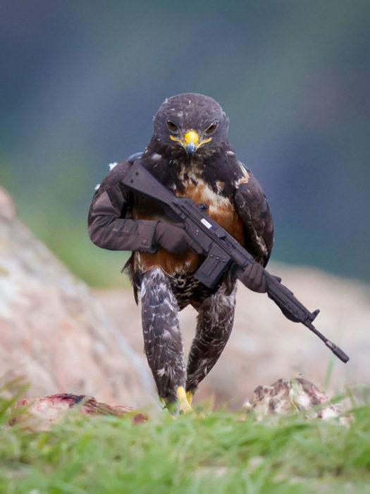 Halcón Batalla PS - con una ametralladora