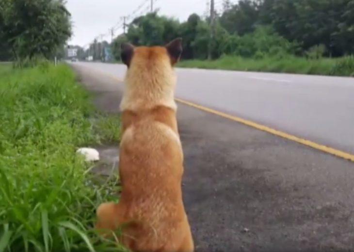 Loung fue abandonado en la carretera, y esperaba a que volvieran por el