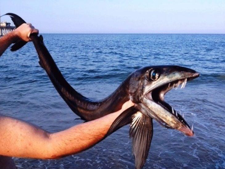 pez enojado