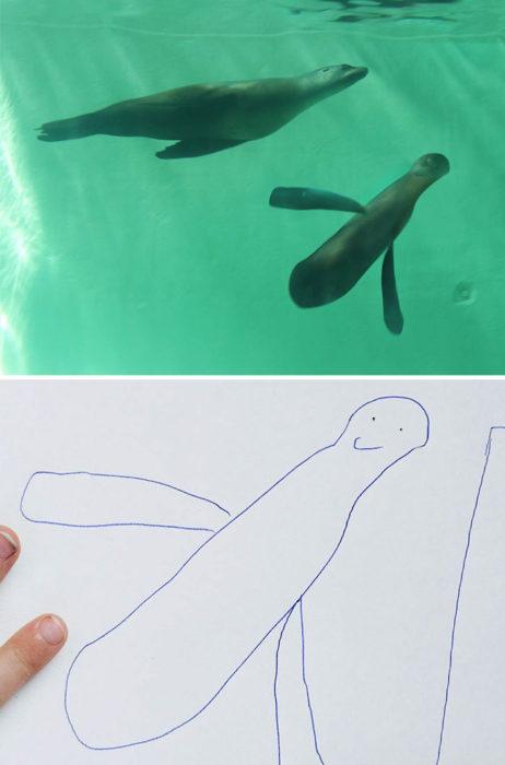Papá recrea dibujos hijo - foca