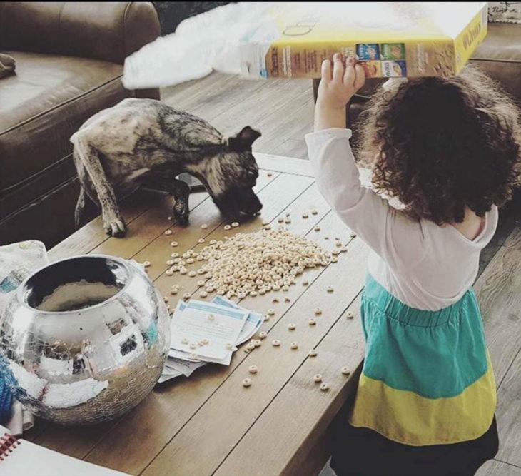 Papás cansados - niña dándole de comer al perro