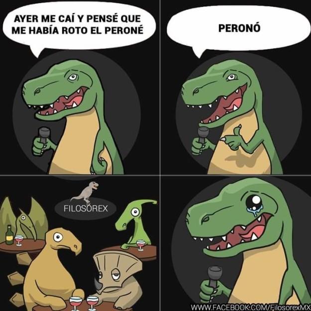 filosorex