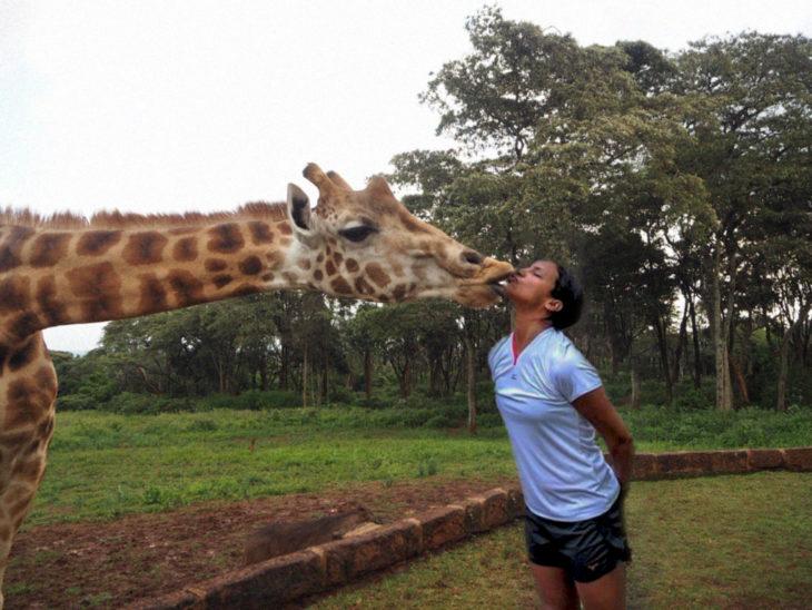 besa jirafa