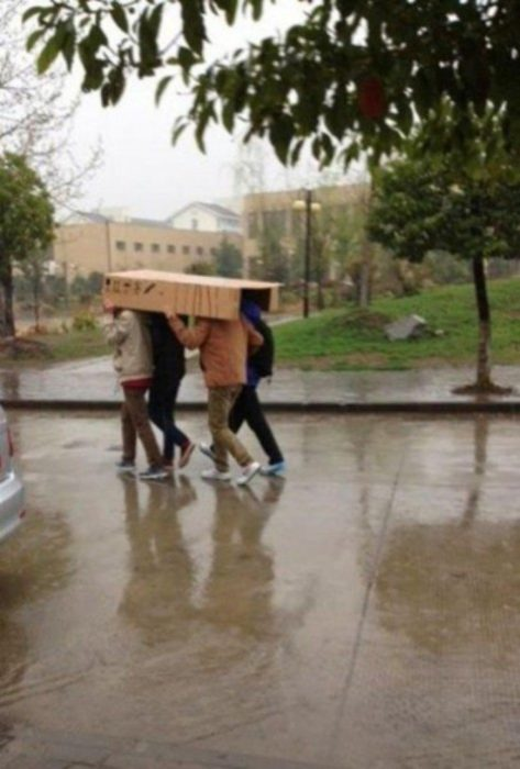 paraguas colectivo