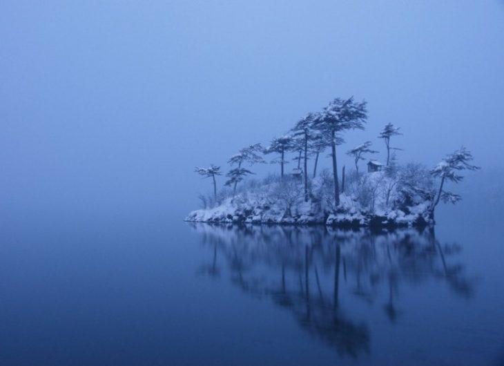 isla de árboles nevados
