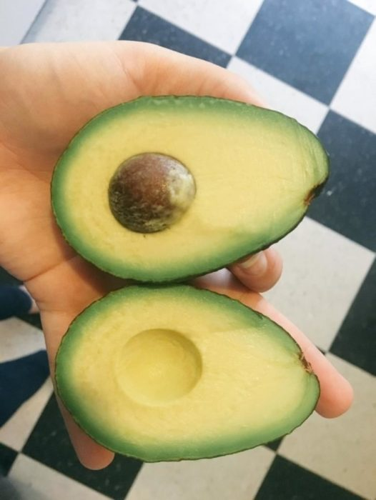 aguacate perfecto