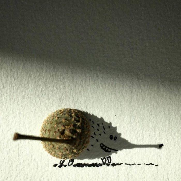 ilustración de puerco espín de la sombra de un fruto