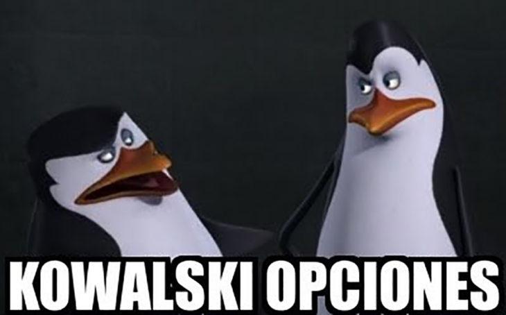 pingüinos de madagascar kowalski opciones