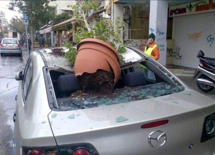 maceta estrellada en un coche