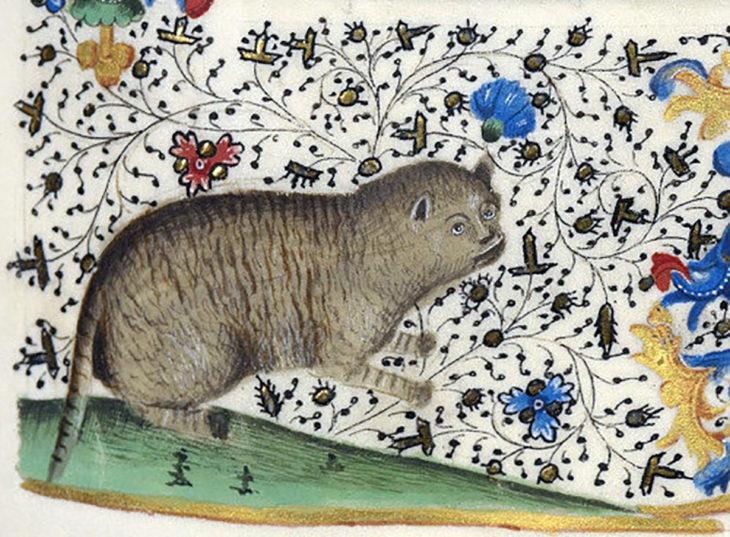 pintura medieval de gato con cejas