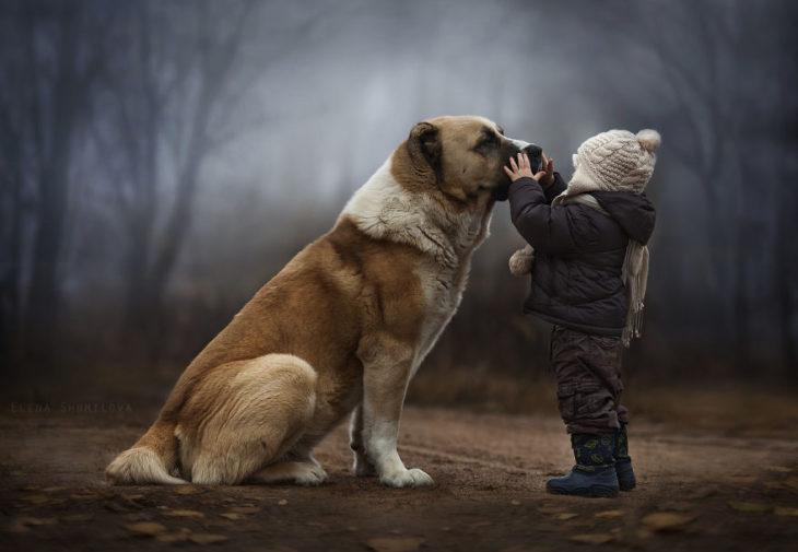 niño acariciando un perro