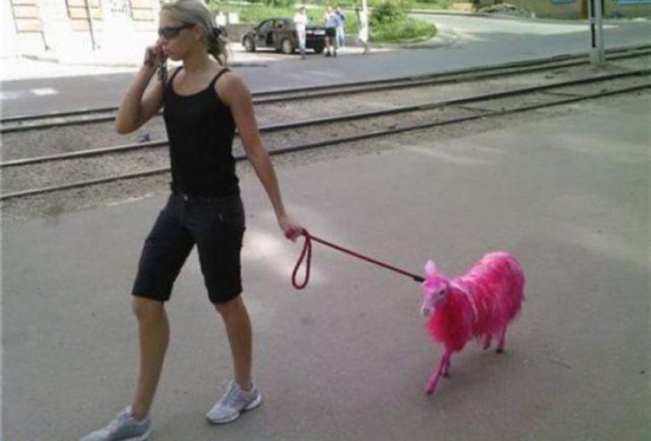 mujer con una oveja rosa